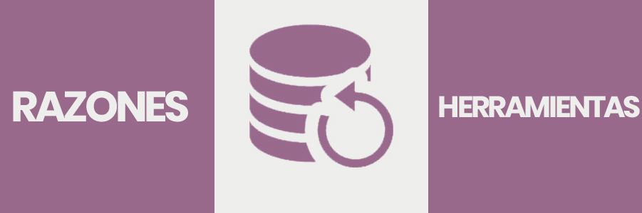 backups en woocommerce