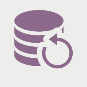 copias de seguridad woocommerce